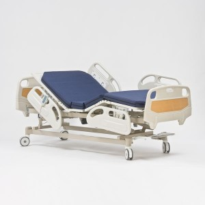 Кровать электрическая FS3239 WZF4